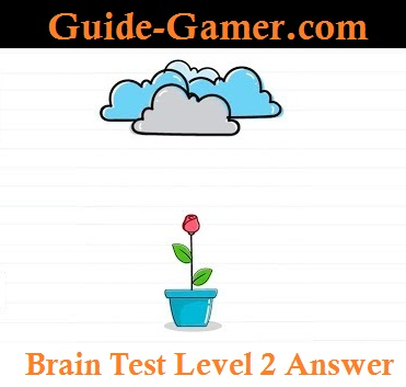 brain test level 2